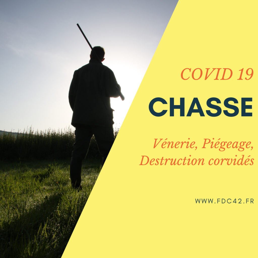 DISPOSITIONS CHASSE – COVID19