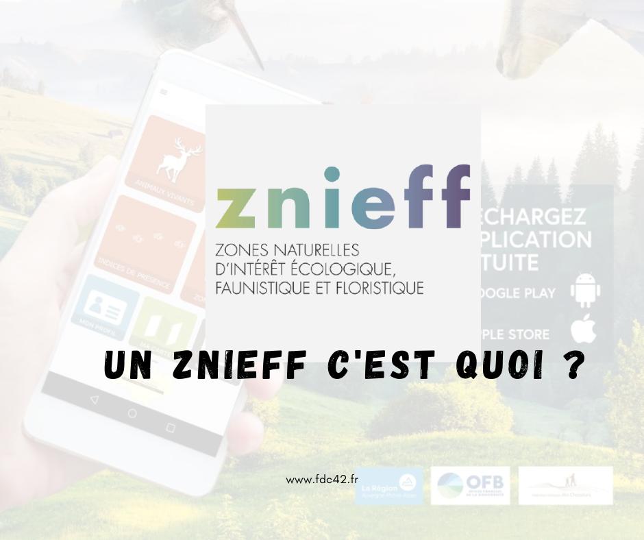 Participation des chasseurs à la mise à jour des inventaires ZNIEFF